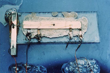 First Integrated circuit