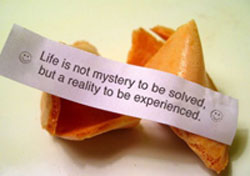 Life is not mystery to be sloved but a reality to be experienced